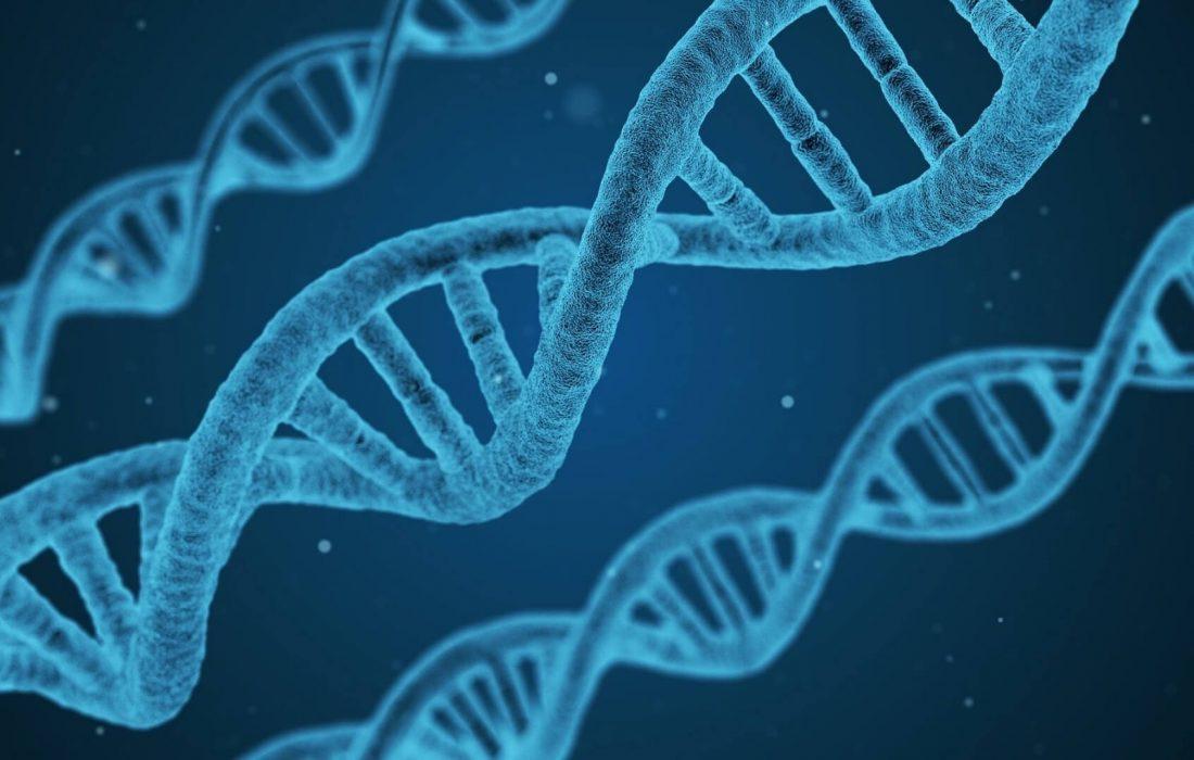 Zelfgenezing Online - Biologisch Decoderen